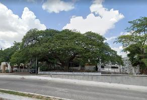 Foto de terreno habitacional en venta en  , buenavista, mérida, yucatán, 14253770 No. 01