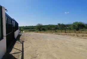 Foto de terreno comercial en venta en  , buenavista sección, allende, nuevo león, 21951184 No. 01