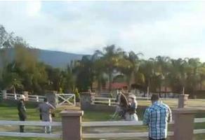 Foto de rancho en venta en  , buenavista, tlajomulco de zúñiga, jalisco, 3986653 No. 02