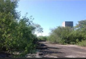 Foto de terreno habitacional en venta en buenos aires , montemorelos centro, montemorelos, nuevo león, 0 No. 01