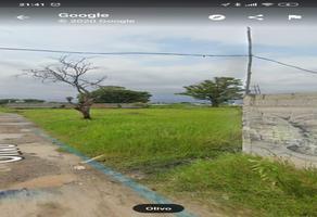 Foto de terreno habitacional en venta en  , bugambilias, jiutepec, morelos, 0 No. 01