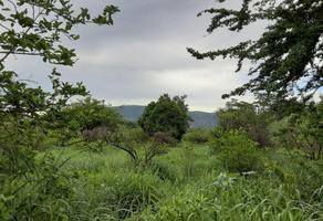 Foto de terreno habitacional en venta en bugambilias , maravillas, jiutepec, morelos, 18388153 No. 01