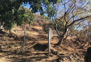 Foto de terreno habitacional en venta en bugambilias md-3, san antonio tlayacapan, chapala, jalisco, 0 No. 01