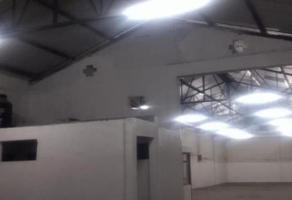 Foto de nave industrial en renta en  , bugambilias, puebla, puebla, 0 No. 01
