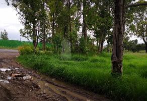 Foto de terreno habitacional en venta en bugambilias , san miguel tlaixpan, texcoco, méxico, 0 No. 01