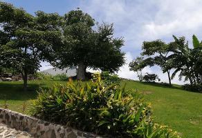 Foto de terreno habitacional en venta en  , burgos, temixco, morelos, 15560518 No. 01