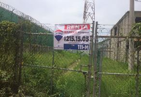 Foto de terreno comercial en renta en burton e. grossman , miramar, altamira, tamaulipas, 5177739 No. 01
