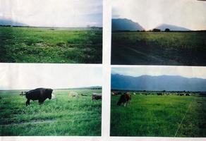 Foto de rancho en venta en  , bustamante, bustamante, nuevo león, 14650026 No. 01