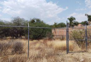 Foto de terreno habitacional en venta en Santa Ana (Santana), Guanajuato, Guanajuato, 20634853,  no 01