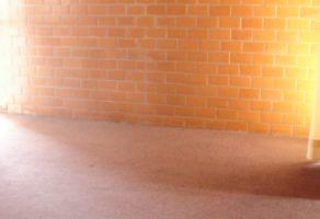 Foto de departamento en renta en Algarin, Cuauhtémoc, DF / CDMX, 20501217,  no 01