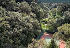 Foto de departamento en venta y renta en Lomas Country Club, Huixquilucan, México, 15114481,  no 01