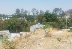 Foto de terreno habitacional en venta en El León, Atlixco, Puebla, 22223728,  no 01