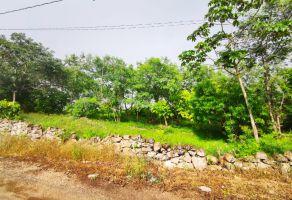 Foto de terreno habitacional en venta en Santa Gertrudis Copo, Mérida, Yucatán, 21448915,  no 01