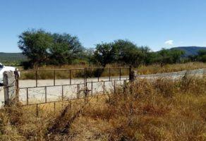 Foto de terreno industrial en venta en El Tejocote, Tequisquiapan, Querétaro, 10256290,  no 01