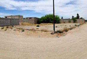 Foto de terreno habitacional en venta en Salvacar, Juárez, Chihuahua, 13669653,  no 01