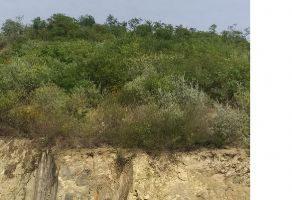 Foto de terreno habitacional en venta en Sierra Alta 3er Sector, Monterrey, Nuevo León, 20027279,  no 01