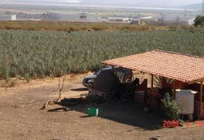Foto de terreno comercial en venta en La Resolana, Acatlán de Juárez, Jalisco, 6779754,  no 01