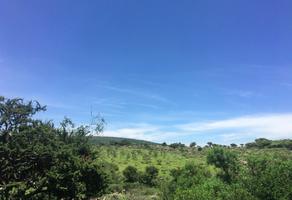 Foto de terreno habitacional en venta en cabras, carretera a celaya , loma de cabras, san miguel de allende, guanajuato, 14188836 No. 01