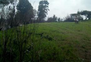 Foto de terreno habitacional en venta en cacahualpa 1 , san jacinto, atlautla, méxico, 0 No. 01