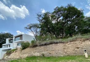 Foto de terreno habitacional en venta en cacahuates , rancho san juan, atizapán de zaragoza, méxico, 0 No. 01