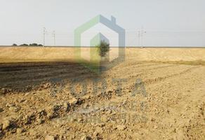 Foto de terreno habitacional en venta en  , cajeme, cajeme, sonora, 11494351 No. 01