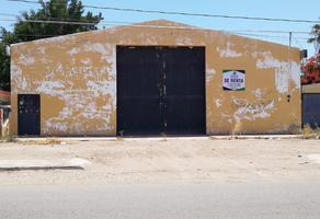 Foto de terreno habitacional en renta en  , cajeme, cajeme, sonora, 11494355 No. 01
