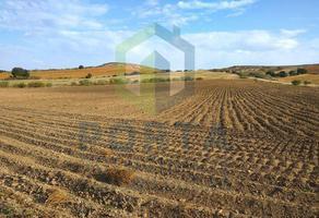 Foto de terreno habitacional en venta en  , cajeme, cajeme, sonora, 11494359 No. 01