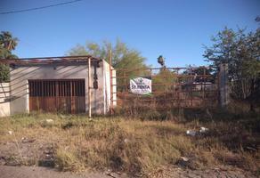 Foto de terreno habitacional en renta en  , cajeme, cajeme, sonora, 11494367 No. 01