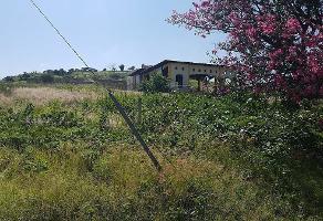 Foto de terreno habitacional en venta en  , cajititlán, tlajomulco de zúñiga, jalisco, 0 No. 01