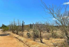 Foto de terreno habitacional en venta en  , calafia, la paz, baja california sur, 0 No. 01