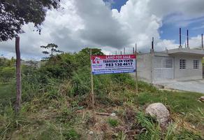 Foto de terreno habitacional en venta en  , calderitas, othón p. blanco, quintana roo, 0 No. 01