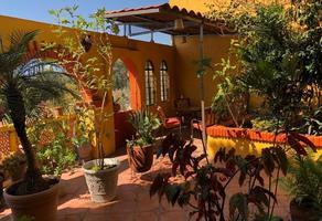 Foto de departamento en renta en  , calicanto, santa lucía del camino, oaxaca, 21315225 No. 01