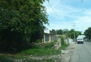 Foto de terreno habitacional en venta en calle 100 , sambula, mérida, yucatán, 0 No. 01