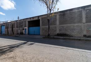 Foto de nave industrial en renta en calle 14 , rustica xalostoc, ecatepec de morelos, méxico, 12594106 No. 01
