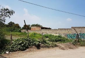 Foto de terreno comercial en venta en calle 16 de septiembre , santa anita, san pedro tlaquepaque, jalisco, 8956070 No. 01