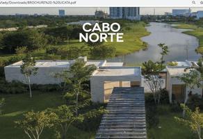 Foto de terreno habitacional en venta en calle 20 , jalapa, mérida, yucatán, 0 No. 01