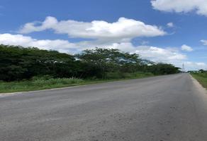 Foto de terreno habitacional en venta en calle 21 , san francisco de asís, conkal, yucatán, 0 No. 01