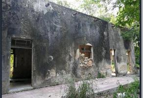 Foto de terreno habitacional en venta en calle 65 a , merida centro, mérida, yucatán, 0 No. 01