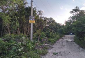 Foto de terreno habitacional en venta en calle acacias calle, encinos, calle mañitas 0 , cancún centro, benito juárez, quintana roo, 0 No. 01