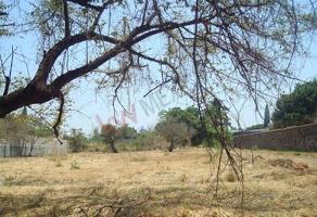 Foto de terreno habitacional en venta en calle alies , lomas de cuernavaca, temixco, morelos, 9026997 No. 01