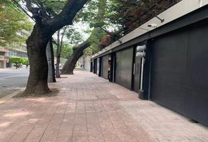 Foto de casa en venta en calle alumnos , san miguel chapultepec ii sección, miguel hidalgo, df / cdmx, 0 No. 01
