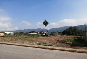 Foto de terreno habitacional en venta en calle constitución , tlajomulco centro, tlajomulco de zúñiga, jalisco, 0 No. 01