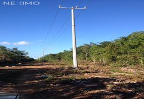 Foto de terreno industrial en venta en calle ebano , supermanzana 312, benito juárez, quintana roo, 0 No. 01