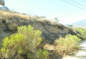 Foto de terreno habitacional en venta en calle epifanio murillo , rogelio appel chacón, ensenada, baja california, 0 No. 01