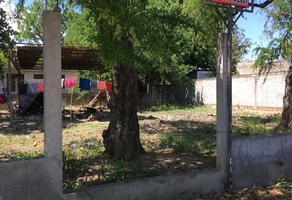Foto de terreno habitacional en venta en calle escobedo , ciudad mante centro, el mante, tamaulipas, 7523065 No. 01