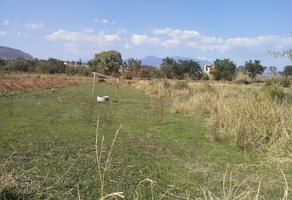 Foto de terreno habitacional en venta en calle los huertos (paralela) 00, cuilápam de guerrero centro, cuilápam de guerrero, oaxaca, 8878903 No. 01