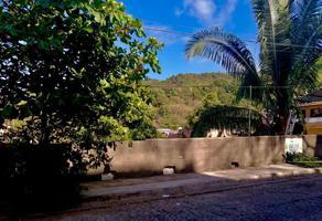 Foto de terreno habitacional en venta en calle mango 13 , 5 de diciembre, puerto vallarta, jalisco, 0 No. 01