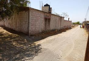 Foto de terreno habitacional en venta en calle michoacán s/n , san miguel atlamajac, temascalapa, méxico, 20562029 No. 01