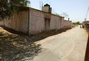 Foto de terreno habitacional en venta en calle michoacán , tontiopa, temascalapa, méxico, 0 No. 01