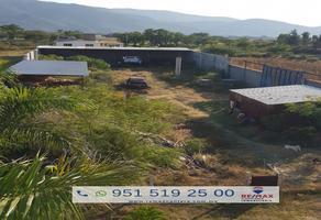 Foto de terreno habitacional en venta en calle miguel cabrera y gregorio chávez , tlalixtac de cabrera, tlalixtac de cabrera, oaxaca, 10250651 No. 01